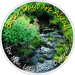 Nature Background (Creek / Flowers) - Better Days are Ahead, For Now Lets Social Distance. Floor Decal (BUNDLE)